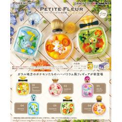 Figurines PETITE FLEUR EX Galar Region Box