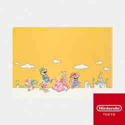 Clear File A Super Mario Family Life