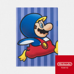Clear File Power Up B Super Mario