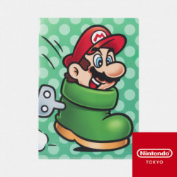 Clear File Power Up D Super Mario
