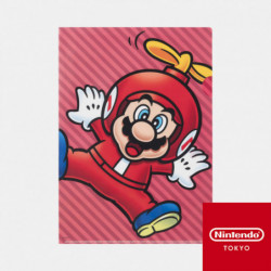 Clear File Power Up A Super Mario