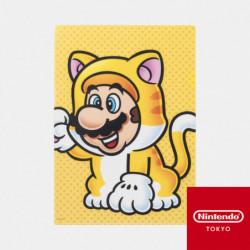 Clear File Power Up E Super Mario