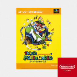 Clear File Double Pocket Super Mario World