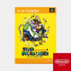 Double Pochette Transparente Super Mario World