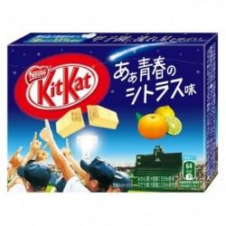 Kit Kat Mini Youth Citrus japan plush