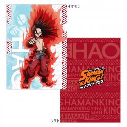 Clear File Hao Asakura Shaman King In Namja Town
