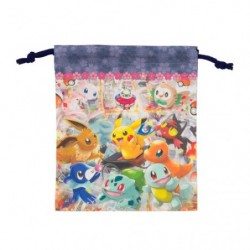 Pocket Bag Pokemon Center Tokyo DX japan plush