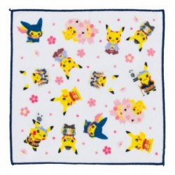 Hand Towel Pokemon Center Tokyo DX japan plush