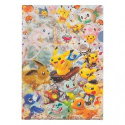 A4 Clear File Pokemon Center Tokyo DX japan plush