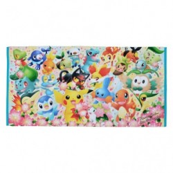 Mini Bath Towel Pokemon Center 20th Anniversary japan plush