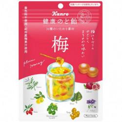 Throat Sweets Plum Large Pack KANRO