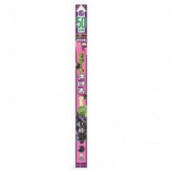Gummies Kyoho Grape UHA Mikakuto
