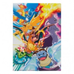 A4 Clear File Kanto Legendary Pokemon japan plush