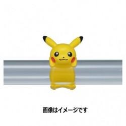 Pokémon accessory R12