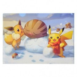A4 Clear File Pikachu Eevee Snow japan plush