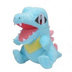 Plush Pokémon Fit Totodile japan plush