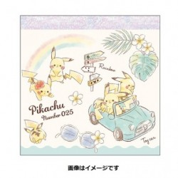 Memo Pikachu number025 Rainbow japan plush