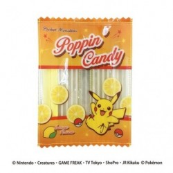 Vynil Pocket Pikachu japan plush