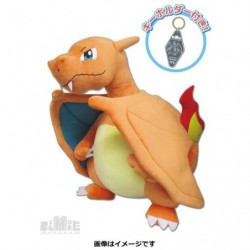 Plush Big More Pokemon Charizard