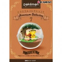 Box Terrarium Collection Pokémon 7