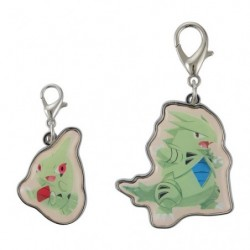 Keychain Larvitar Tyranitar Pokémon Evolution japan plush