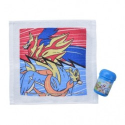 Wet towel with case Pokémon Galar japan plush