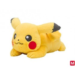 Plush Pikachu Fluffy friend wants hugs japan plush