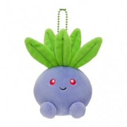 Plush keychain Oddish Motchiriman maru japan plush