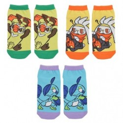 Short Socks Starter 2nd Evolution Pokémon GalarTabi japan plush
