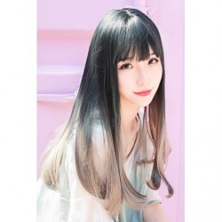 Cosplay Wig TefuRe Long Straight Black Grey Hair Gradation japan plush