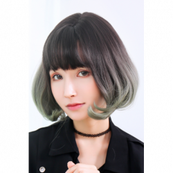 Cosplay Wig TefuRe Classic Bob Hair Natural Black Ash Green Gradation japan plush