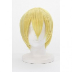 Cosplay Wig Gilgamesh Fate/Grand Order Absolute Demonic Front Babylonia japan plush