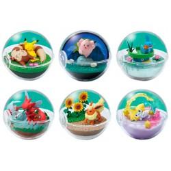 Terrarium Collection BOX Pokémon 8