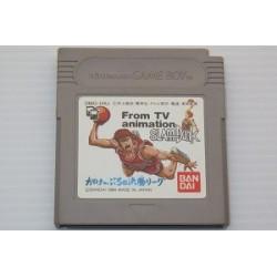 Slam Dunk: Gakeppuchi no Kesshou League Game Boy japan plush