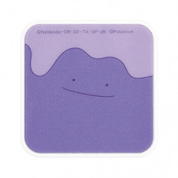 AC Adapter Ditto USB 2 Port