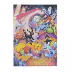 Clear file A4 Pokémon Center Kanazawa japan plush