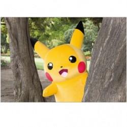 Postcard Pikachu E japan plush