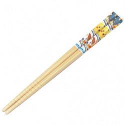 Chopsticks SWSH21