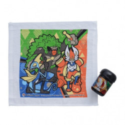 Wet Table Towel with Case Galar Trio