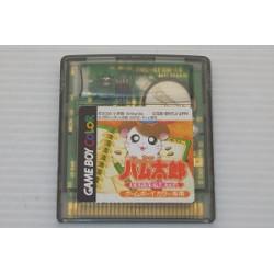 Tottoko Hamtaro Tomodachi Daisakusen Dechu Game Boy Color
