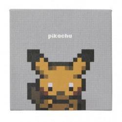 Small Box Pokemon Game Dotto japan plush