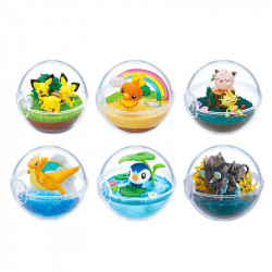 Terrarium Collection Pokémon 9 BOX