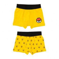 Boxer Pikachu GD2 Set