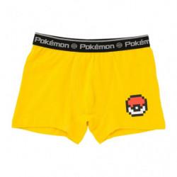 Boxer Pikachu GD