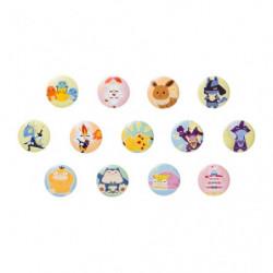 Badge Collection Pokémon Shiny Friends