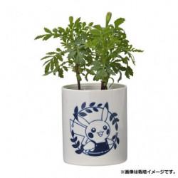 Plant Set Marigold Pokémon Grassy Gardening